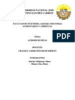 Acidosis Ruminal Monografia