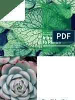 Plants.pdf