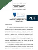 Informe Del Registro Publico y Funcion de Valor Probatorio