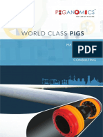 Bi directional pig