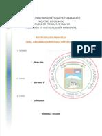 DEGRADACIÓN DE PESTICIDAS.docx