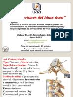 TORÁX; ARTICULACIONES