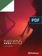 Notion6_Guía_Rápida