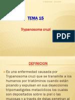 15.- CHAGAS.pptx