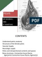 Female pelvis-clinical anatomy
