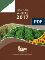 Memoria_17.pdf
