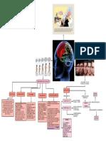 Diagrama de Biologia