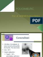 Virusul Poliomielitic