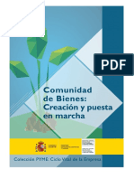 Comunidad de Bienes, Creación y Puesta en Marcha