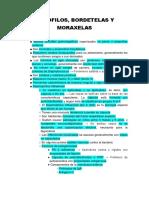8.- Hemófilos, Bordetelas y Moraxelas