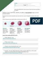 Gummy Bear Osmosis Lab.pdf