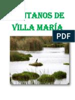 Pantanos de Villa María Chimbote