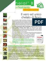 Bollettino Chelal B