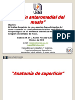 Muslo; Anteromedial