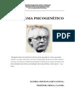 PARADIGMA PSICOGENÉTICO j-p