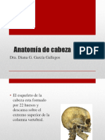 Anatomía de cabeza.pptx