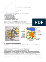 kingdoms (4º).pdf