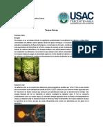 Ecologia Tareas Extras