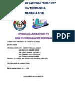 INFORME DE CONSOLIDACION 2019.docx
