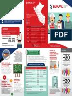 Trip_Seguridad y Salud en el Trabajo.pdf