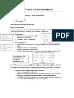Tema 7 Nucleótidos y Ácidos nucleicos ✓