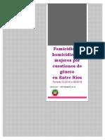 Informe Femicidios REJUCAV 2019