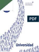 Revista de investigación y marketing aedemo