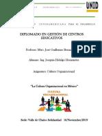Proyecto Cultura organizacional
