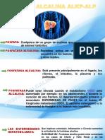 fosfatasa alcalina