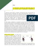 Fase_3_Antenas_UNAD