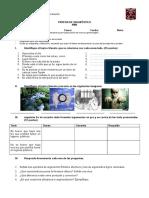DiagnósticoNM4.doc