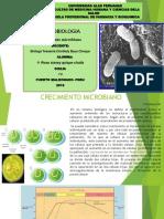 Crecimiento Microbiano Exp