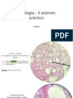 internet-Copia-de-Patologia-II-Examen-1-1.pdf