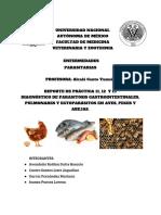 Último reporte de prácticas .pdf