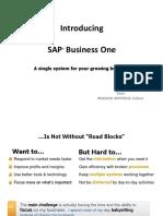 Tmp RI SAP B1 Presentation