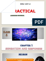 ASHLEY ICT (2) b