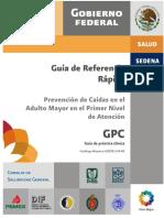 Caídas (prevención, adulto mayor) GRR.pdf