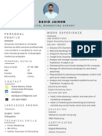 David Jaison | Digital Marketing Resume Example