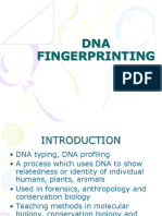 DNA FINGERPRINTING2.ppt