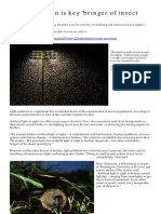 Light Pollution Insect Decline Guardian Nov 2019
