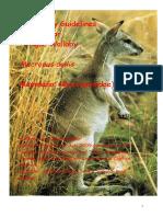 Mammals. Agile Wallaby 2010SS