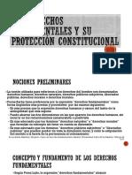 Los Derechos Fundamentales y Su Protección Constitucional