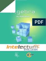 Álgebra 4. Actividades - Intelectum