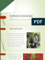 FARMACOGNOSIA RECOLECCION.pptx