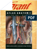 Atlas anatomii  in polish