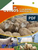 Manual Ovinos1