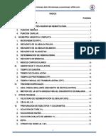 230107764-Protocolo-Hemato-2013