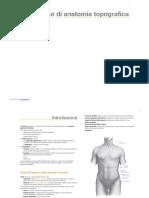 Corso Di Anatomia Topografica