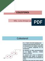 Colesterol= III UNIDAD