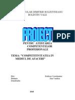 Copy of Atestat(Competitivitatea in Mediul de Afaceri)